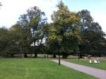 Southampton Center Park